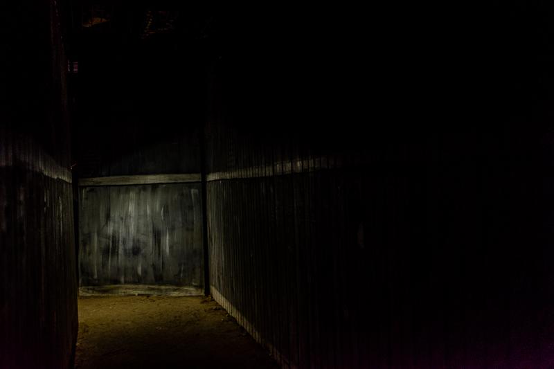 A Walk In The Dark!